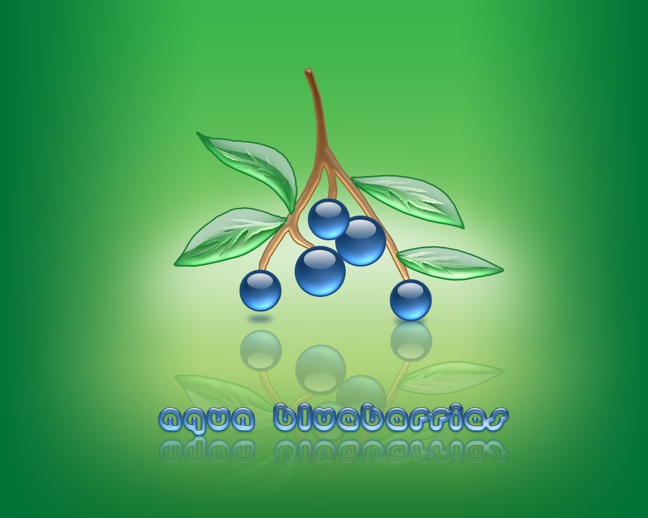 aqua blueberries 02
